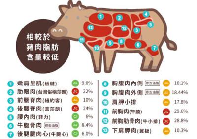 專家圖解「牛肉油脂含量」 這些部位好油!