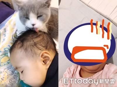 小貓把嬰兒當貓用嘴「幫她理毛」