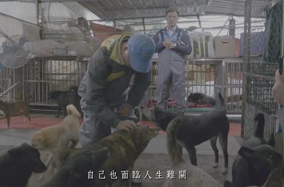 愛狗張媽媽揭魏應充入監前助毛孩