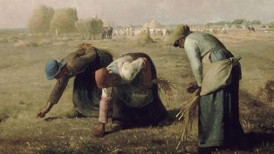 米勒的名畫「拾穗」背後的聖經故事 婆媳撿麥穗...撿到改嫁好老公