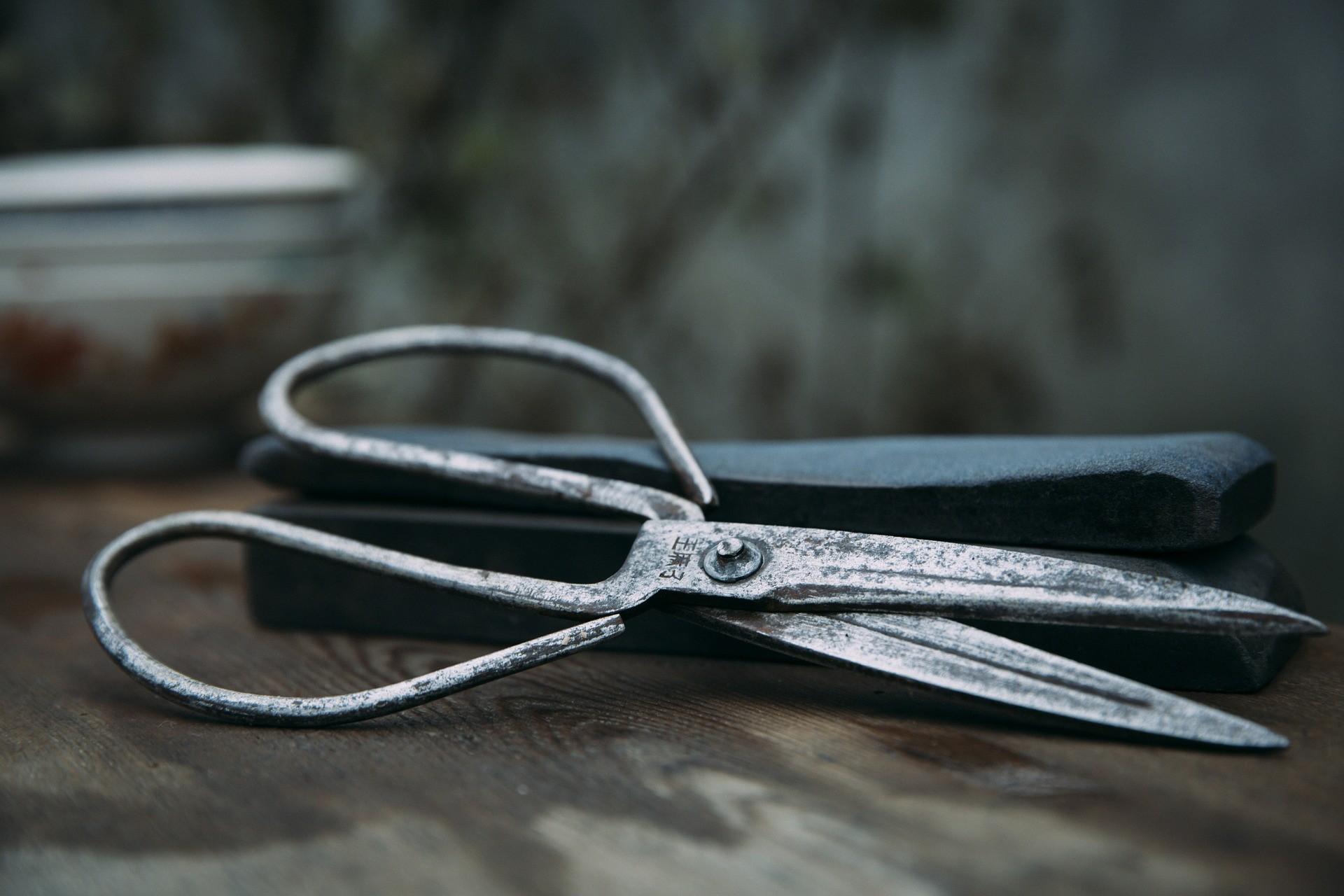 ▲▼剪刀,園藝剪刀,鐵剪刀。(圖/取自免費圖庫Pixabay)