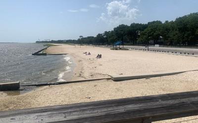 毒藻大爆發 密西西比關21海灘