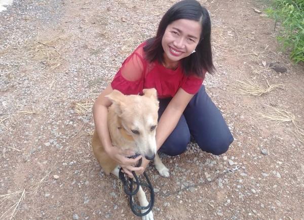 移工夫婦寵毛孩 霸氣撂「牠們是家人」帶1狗5貓回泰國