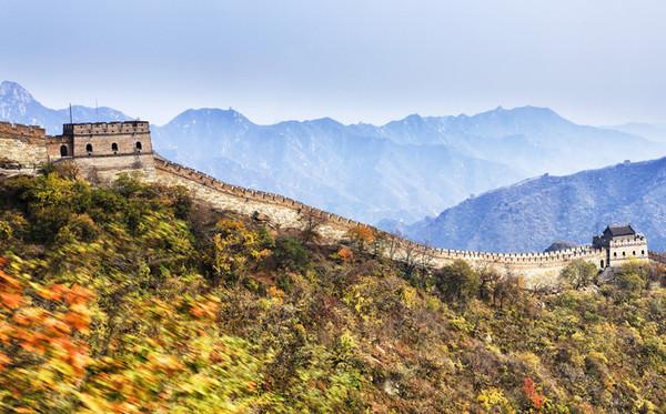 北京置身金色銀杏大道!滿滿世界遺產看不完