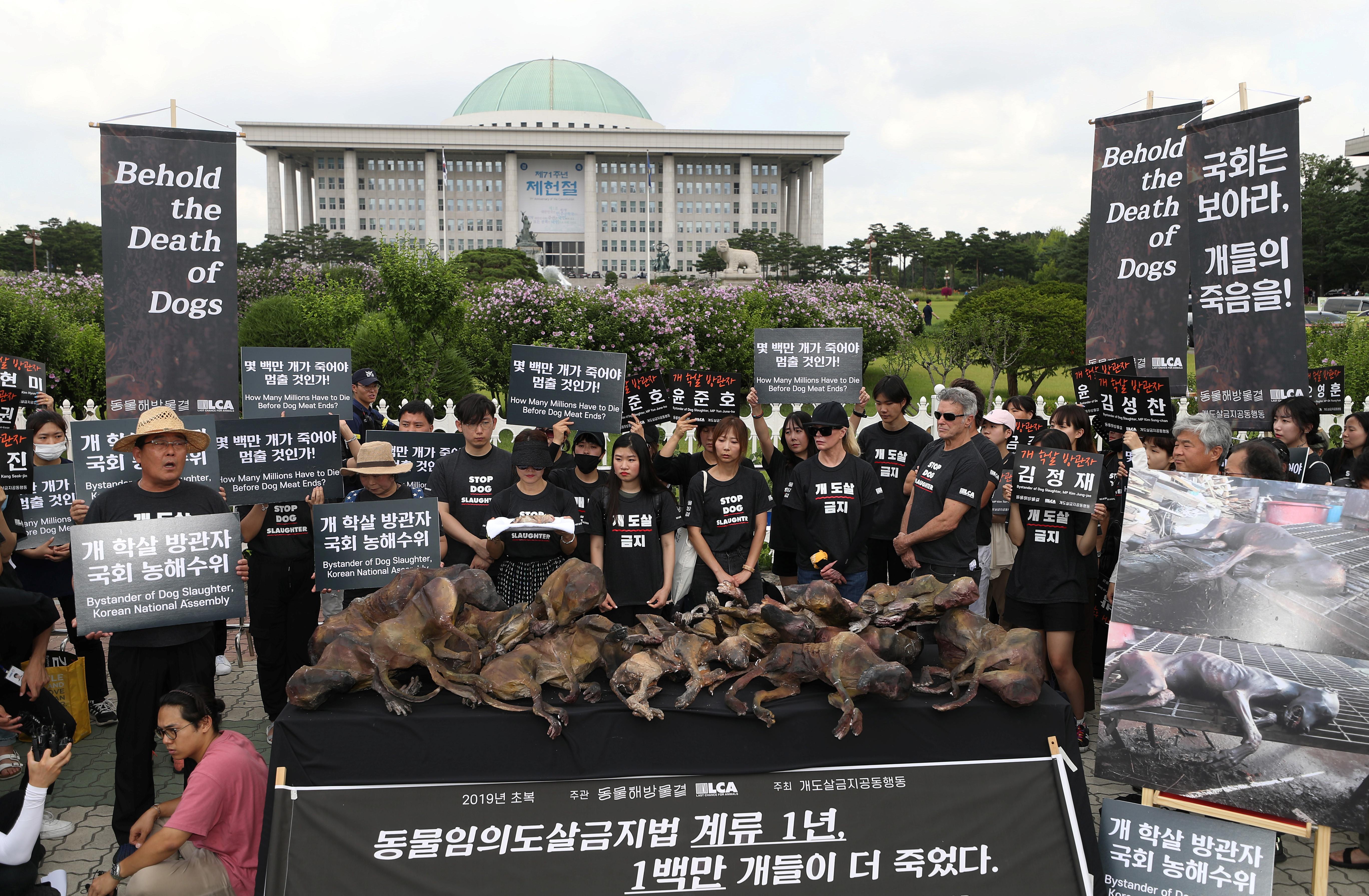 ▲▼金•貝辛格參與南韓禁食狗肉集會(圖/路透社)