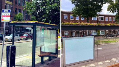 荷蘭公車站牌改造成蜜蜂庇護所 乘客在「迷你花園」下面等車