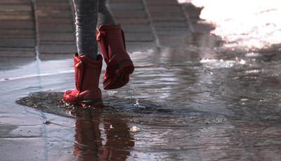 豪雨後當心「致病細菌」被帶出地表 3大錯誤清理法要避免