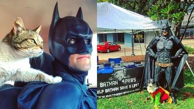 毛孩們的超級英雄!匿名志工現身都扮蝙蝠俠 安樂死前救回無家浪浪
