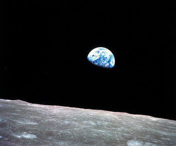 美研究:地球20年前已停止「變綠」