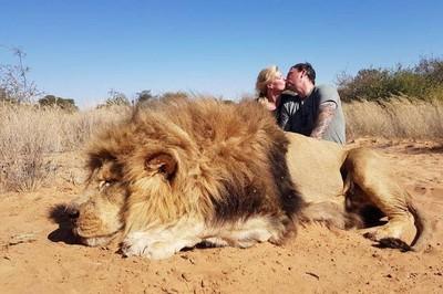 夫妻南非獵殺獅子 PO「巨獅屍體旁熱情擁吻」照 挨轟:殘忍又變態
