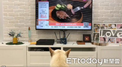 轉到肉肉節目!柴秒衝電視前坐好