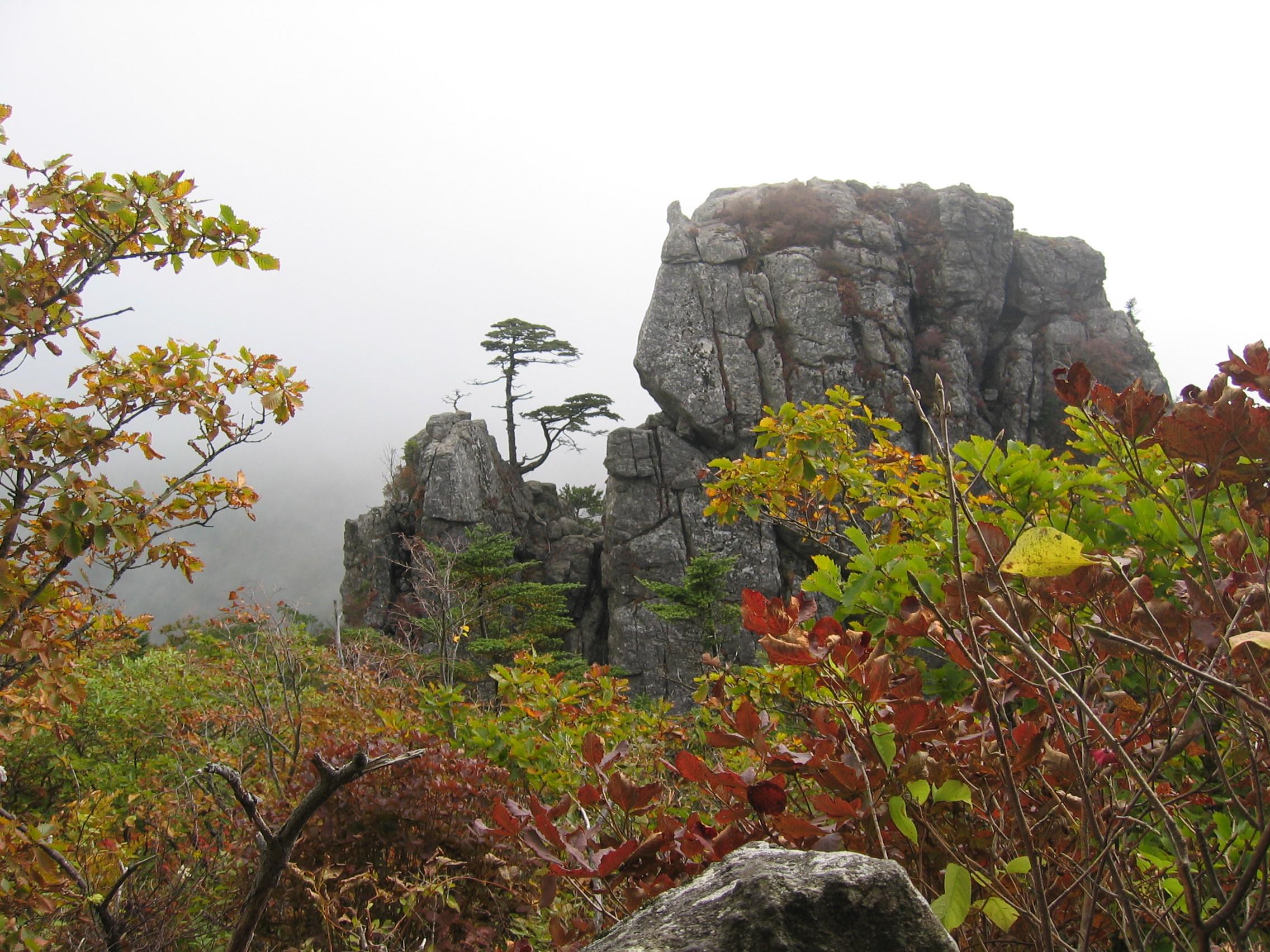 ▲▼徐寶拉屍體從智異山13公尺懸崖墜落(圖/翻攝自維基百科)
