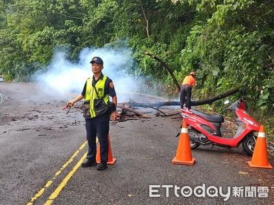 颱風天豪雨路倒傷農 泰武警消及時協助救援
