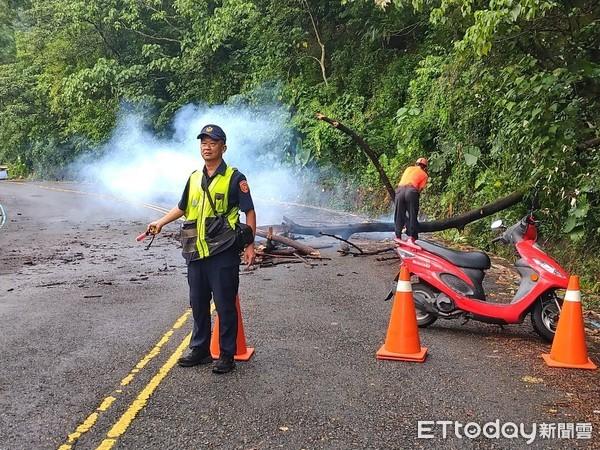 颱風天豪雨路倒傷農 泰武警消及時協助救援…按讚不斷