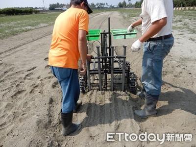 手推多行行距可調式移植機 農夫好幫手