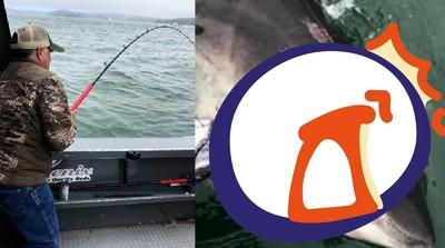 釣到凶狠大白鯊 船被拖行3.2公里