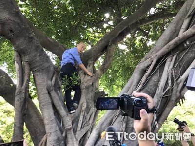 快訊/韓國瑜視察登革熱「登上樹梢」!