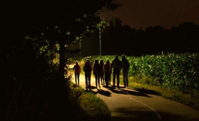 荷蘭父母流行把小孩載到夜晚森林「放生」