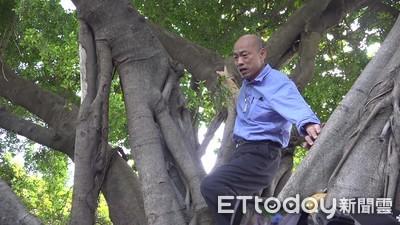 為何爬樹? 韓國瑜:讓市府感受防疫決心