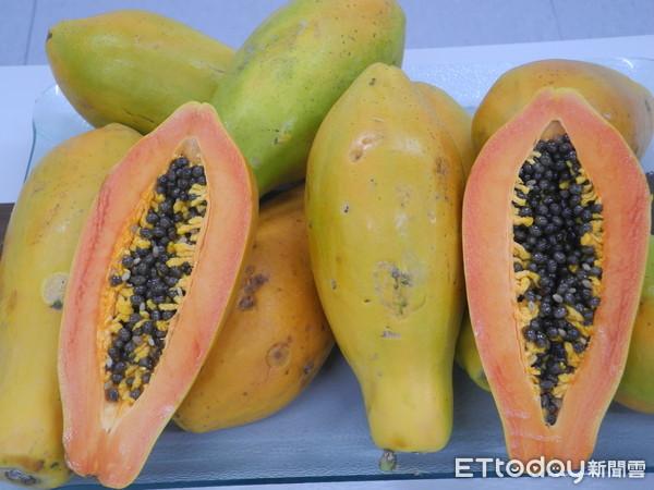 專家公開4熱門木瓜品種差異 維生素A、C是西瓜和香蕉5倍 | ETtod