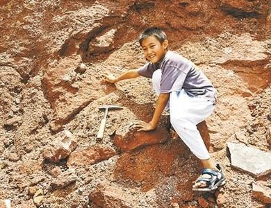 9歲小學生發現11枚恐龍蛋化石
