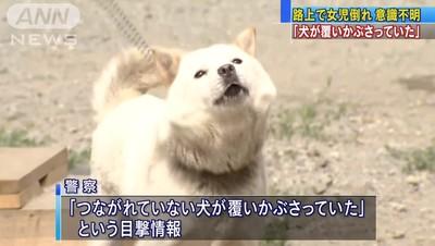 日女童癱軟倒路邊 鄰居犬趴身上