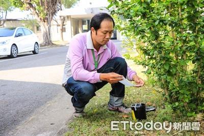 台南登革熱防治 使用誘卵桶監測