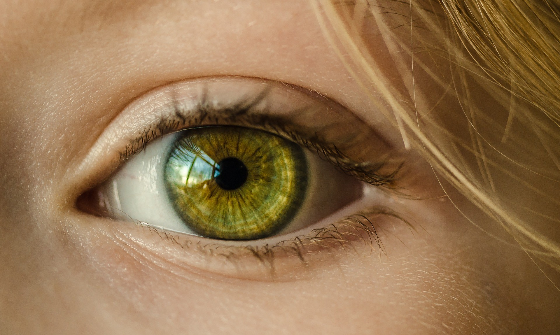 ▲眼睛。(圖/取自免費圖庫Pixabay)