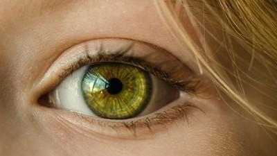 眼角膜放紙袋「搭火車北上」 醫生談運送器官:我面交的是光芒