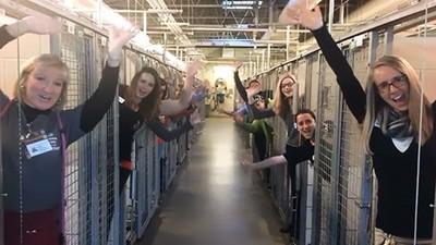 收容所「鐵籠全空」!動物志工舉手歡呼 僅靠一妙招,讓所有貓狗找到歸屬