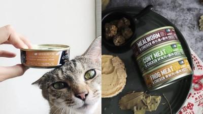 蟋蟀、小白鼠做成貓罐頭!標榜天然無膠 業者透露:打算再推小強口味