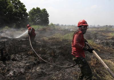 印尼火耕引發大火!6000警力趕滅138火點