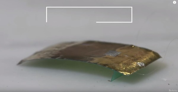 ▲▼蟑螂機器人。(圖/翻攝自UC Berkeley官網)