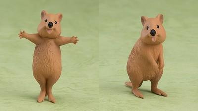 「自拍神獸」短尾矮袋鼠出轉蛋!萌笑討抱超快樂~心快融化啦