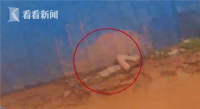 廢棄場「屍體」躺1天1夜 警察到場突然手動了
