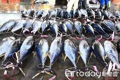 漁船夾帶黃金及魚貨謀暴利?索國外交大使假的啦