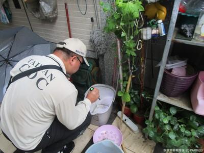 高雄仁武登革熱 疑在台南老家感染