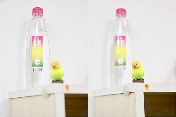 大檸檬用圖(圖/uniwater合作文/記者黃姵潔攝)