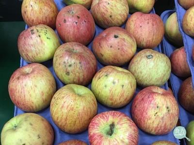 蘋果凹陷斑點不是爛掉!專家解析苦痘症
