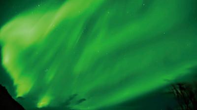 遊冰島前你該知道!冬季最適合看極光 但請小心「公綿羊」