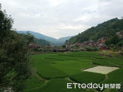 貴州全省發展1904萬畝林下經濟帶動188萬農村人口增收