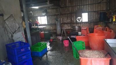 台中鴨腸加工廠散發惡臭排廢水 環局開罰3萬