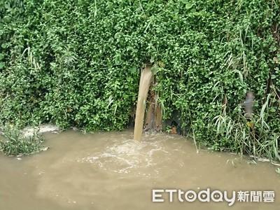 環保志工發現偷排畜牧廢水告發罰鍰