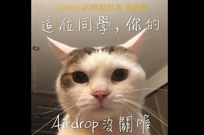 Airdrop沒關! 她收萌貓提醒笑噴