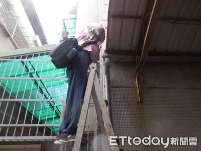 台南新增1例境外移入登革熱病例累計28例