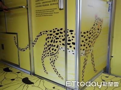 300萬彩繪列車石虎畫成豹、字體侵權