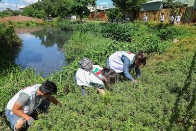房仲深入社區這樣做 助八德髒臭埤塘恢復生機