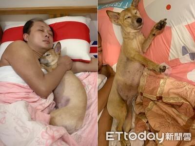 颱風夜見老公和小三「床上裸擁」