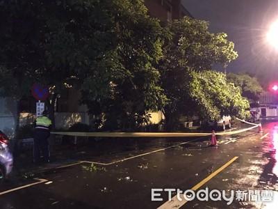 白鹿颱風尾發威路樹倒塌南警移除