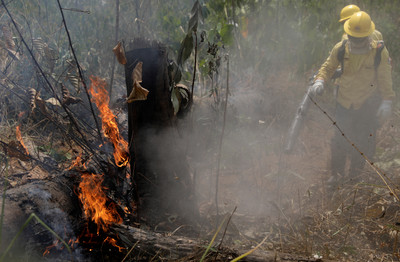 支援亞馬遜大火 G7領袖將達協議